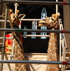 giraffes in the Minster